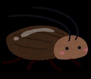 ゴキブリ20200617