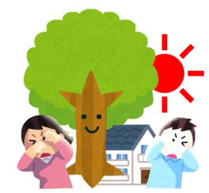 シンボルツリー20210609