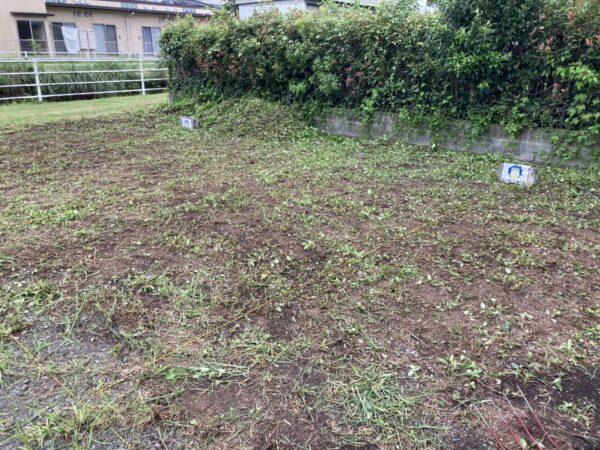 草刈り20210827