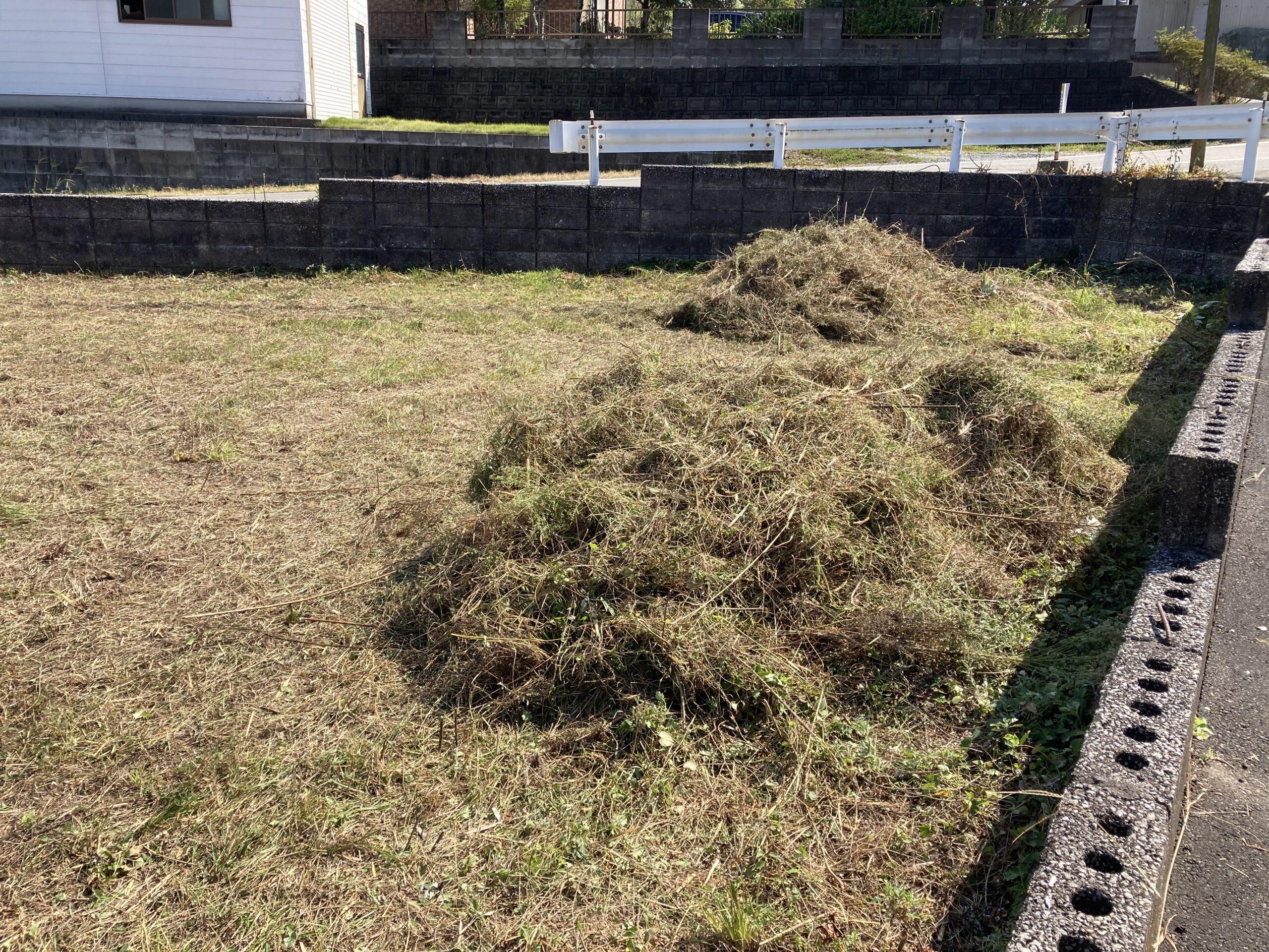 草刈り20211013